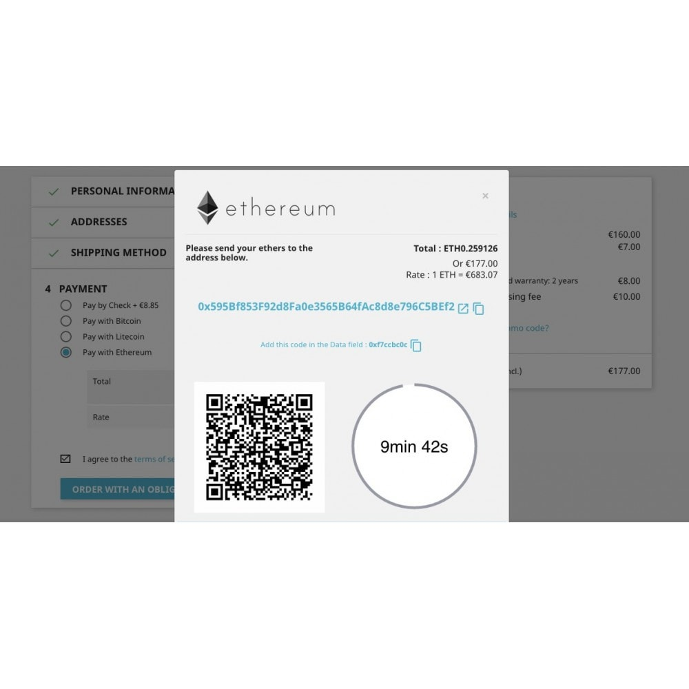 module - Andere Zahlungsmethoden - Ehtereum - Accept bitcoins directly into your wallet - 3