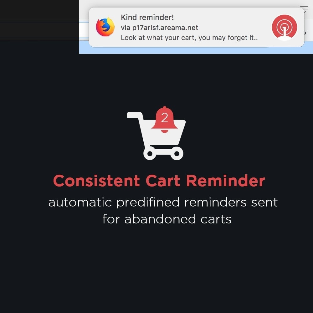 module - E-Mails & Benachrichtigungen - OneSignal - Browser Push Notifications + Cart Reminder - 5