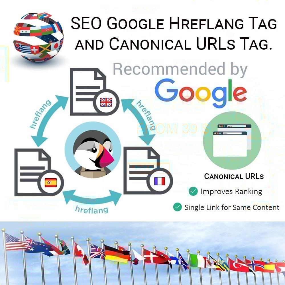 module - SEO (Referenciamento natural) - SEO Google Hreflang Tag and Canonical URLs Tag - 1